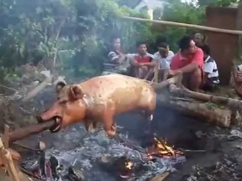 Babi guling one of best traditional food of Indonesia from Bali