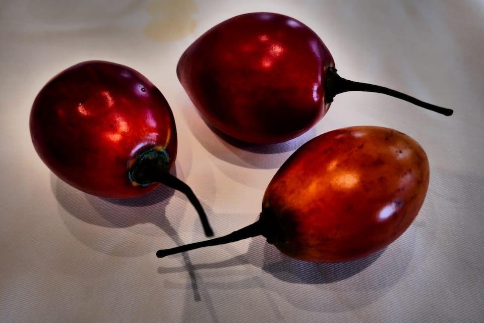 tomate de arbol famous foods ecuador
